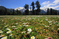 Pahalgam landscape (Debmalya Mukherjee) Tags: flowers india landscape kashmir himalaya jammuandkashmir pahalgam incredibleindia 1018mm canon550d debmalyamukherjee