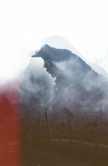 Trying out double exposure (Bambi Corro) Tags: forest doubleexposure multipleexposure mountbromo