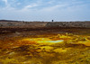 Tourists in the colorful volcanic landscape of dallol in the danakil depression, Afar region, Dallol, Ethiopia (Eric Lafforgue) Tags: africa travel lake color tourism nature pool beauty horizontal landscape outdoors volcano spring colorful solitude day desert natural earth acid horizon surreal nobody nopeople formation serenity heat minerals environment sulphur isolation geography geology ethiopia hotspring volcanic groupofpeople saline geothermal interest arid adultsonly ecosystem hornofafrica afar eastafrica geological abyssinia afarregion dallol danakildepression ethio161931