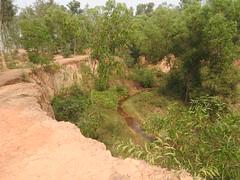 Ranga Mati (kaushb) Tags: khoai santiniketan