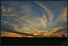 The news is not good (WanaM3) Tags: park sunset scenery texas sony scenic houston vista a700 sonya700 wanam3 elfrancoleepark