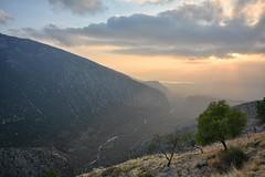 Sunset Valley, Delphi, Greece (ott.geoffrey) Tags: sunset delphi greece valley
