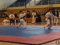 stefanou_15_5_2016_knockdown_123