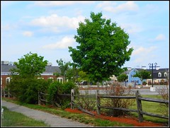 Green Foliage Spring Trees & Broken Wooden Fence - Photo by STEVEN CHATEAUNEUF - May 28, 2016 (snc145) Tags: plaza blue trees red sky usa green nature colors grass leaves clouds fence buildings landscape photo spring parkinglot scenery colorful seasons bright massachusetts gray vivid foliage walkway lantern soe bold chelmsford autofocus flickrunitedaward stevenchateauneuf may282016