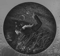 UNDER THE FOREST (oroyplata.) Tags: bw forest explorer fine surreal levitation bubbles down bn bosque conceptual rafa redondo circulo abajo selfie burbujas irreal alreves encuadre macas subwater oroyplata