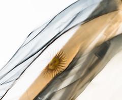 DSC_8061 (Chinsanchez) Tags: argentina bandera