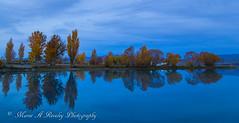 Autumn Reflection (Somerslea) Tags: 2016 april autumn canonef24105mmf3556isstm canoneos6d lakebenmore mareeareveleyphotography newzealand ohauc ohauccanal otago southisland tekapo canterbury nz