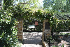Grapevine Botanical Gardens at Heritage Park Texas (People, Places & Things) Tags: texas botanicalgardens grapevine heritagepark