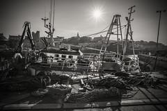 The fishing business.... (A A A A Dafydd Penguin) Tags: ireland light sun sunlight port evening coast harbor pier boat fishing dock nikon ship harbour cruising coastal 20mm af nikkor northern trawler d600 vesel ardglass f28d