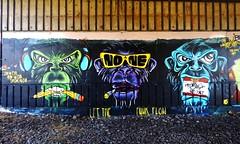 Monkey Business (nonesense69) Tags: green graffiti monkey sketch mural none g speaknoevil seenoevil croatia business zagreb wise monkeys spraypaint graff graffitiartist aerosolart spraycan graffitiart sprayart 2016 graffitiartists graffitiporn hearnoevli