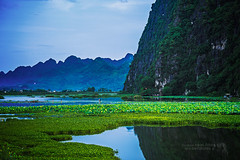 ~ sm mai trn m Vn Long (bw.futures) Tags: sky mountain plant art water field grass rock canon catchycolors landscape eos bay coast is seaside waterfront outdoor hill vietnam shore serene grassland saigon 70200mm ninhbinh f4l canonef70200mm bacninh ef70200mmf4lis almostanything canonef70200mmf4lis bwfutures unlimitedphotos vanlongnaturereserve neonfoto facebookneonfoto flickrbwfutures earlymorningatvanlongnaturereserve