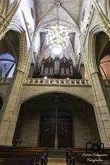 Catedral Sta Maria 2 (Javier Colmenero) Tags: architecture nikon cathedral catedral organ euskadi vitoriagasteiz sigma1020mm rgano catedralsantamara nikond3100 catedralviejavitoria