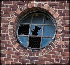 DSC_2048 (DianeBerky19) Tags: windows newjersey brokenglass ellisisland 18140mm nikond750