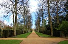 (ashleigh290) Tags: road cambridge england green grass spring university unitedkingdom path lawn driveway