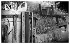 The bin by the pond (Dave Denby) Tags: park trash bench pond bin rubbish