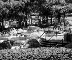 DSC04582 061216 (Xynalia) Tags: park atlanta blackandwhite bw nature fountain georgia centennial blackwhite olympics