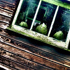 Window (josephburden58) Tags: abstract stain gardens paint shed squareformat mould woodgrain compact fujifilmx10
