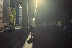 (shimobros) Tags: show hot film bike japan vintage honda chopper nikon fuji natura 1600 mc moto motorcycle rod yokohama custom rp digger dax f90x bobber mooneyes st90 adobelightroom 2013  st50 hotrodcustomshow cy50  shimobros
