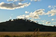 shadow hill (dustaway) Tags: winter sky grass clouds landscape shadows horizon hill australia bluesky nsw fields australianlandscape lismore afternoonlight ruralaustralia northernrivers rurallandscape afternoonlandscape tuncester
