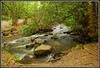 On The Way To The Mill (Jerry Jaynes) Tags: park trees mountains water nc rocks stream northcarolina rhododendron smokies greatsmokymountainsnationalpark gsmnp nikkor1685vr