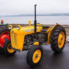 Massey Ferguson Tractor (Briantc) Tags: scotland bute isleofbute rothesay tractor tractors tractorrally masseyferguson masseyfergusontractor