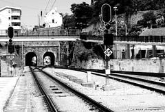 Railway (mgkm photography) Tags: travel blackandwhite portugal train nikon transport structures railway monochrom bnw blackandwhitephotography comboio ilustrarportugal d3100