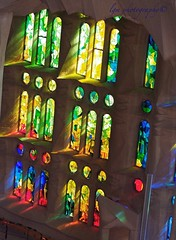 Sagrada Familia Stained Glass (Halcon122) Tags: barcelona color art window spain downtown raw catholic cathedral holy sagradafamilia sacredfamily epm2