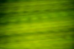 20130719-_DSC7843 (Fomal Haut) Tags: walking nikon 80400mm d4 歩く 散歩写真 sanpocamera