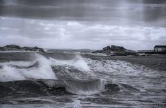 North Shore Seascape