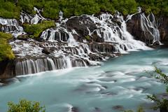 Là où les cascades sortent de sous la lave (Tonton Dave) Tags: water river landscape waterfall iceland eau rivière cascades paysage islande hraunfossar hvita barnafoss
