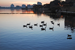 We are the 99% (... Marlo Lao) Tags: california silhouette oakland lakemerritt waterreflection marlolao wearethe99