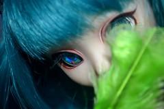 La Lettre Verte~ (Foxy's Picture) Tags: flat bleu wig pullip custom custo verte lettre obitsu tiphona