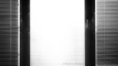 am Fenster (Martin.Matyas) Tags: blackandwhite bw black window blackwhite fenster sw schwarzweiss rollo schwarzweissfoto eos7d