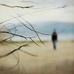 (Victoria Yarlikova) Tags: blur silhouette lensbaby square soft dof sharp