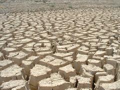 Abi Estada - 10 cm deep mud cracks in Gardez River bed (Sep 2002 - CS) (UNEP Disasters & Conflicts) Tags: unitednationsenvironmentprogramme postconflictanddisastermanagementbranch afghanistan uneppcdmb river drought gardezriver unep unenvironment