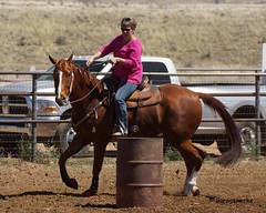 Dewey Barrel Race (Garagewerks) Tags: arizona horse woman sport female race all sony country barrel arena rodeo dewey cowgirl athlete equine 50500mm views50 views100 views150 f4563 slta77v