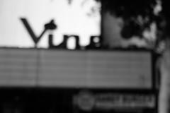 Vine Theater (ho_hokus) Tags: california ca blackandwhite bw monochrome la losangeles theater movietheater x20 hollywoodboulevard 2014 vinetheater fujix20 fujifilmx20