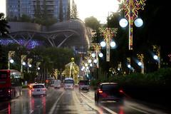 scott road at sunset after the rain (jmarnaud) Tags: xmas family light food car night singapore granpa petit granma salut 2014