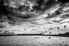 நீர்க்கூடு சேர்ந்த பனைப்பறவை (ayashok photography) Tags: sky india tree rain kids clouds asian nikon asia indian minimal palmtrees palmtree desi monsoon minimalism tamilnadu bharat tenkasi westernghats bharath desh barat kutralam barath rainyclouds thenkasi 2013 nikkor24120mmvr nikonstunninggallery ayashok nikond700 ayashokphotography ayp8898bw