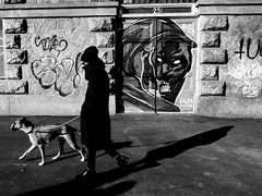 _0018698 (Fabio McCaree) Tags: street bw snaps ricoh grd4 spigolature