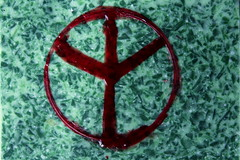 peace is up - up is peace (Etching Stone) Tags: red green reed water up set peace symbol map background 15 down moose safety pots stop mind gradient spirituality elk inverted setting protection twisted roadmap habits valkyrie rune archetype elch futhark neurons holunder eibe sentientbeings elderfuthark elhaz algiz twistedmind hiddendanger colorgradients archetypalconsciousness