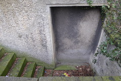 closed for good (erix!) Tags: stairs moss closed treppe moos stufen cellardoor zugemauert mossysteps kellertreppe bemoostetreppe