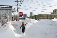 On the Sidewalk (metroblossom) Tags: cambridge snow girl child path massachusetts sidewalk stopsign cambridgeport img2845c