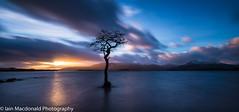 Millarochy Bay Blues (Iain T Macdonald) Tags: trees winter sunset lake tree clouds scotland oak long exposure loch lomond lochs landsxapes millarochybay