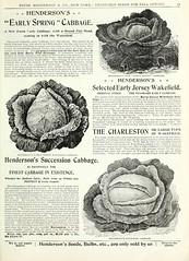 n64_w1150 (BioDivLibrary) Tags: flowers gardening seeds cabbage catalogs equipmentandsupplies bulbsplants tradecatalogues peterhendersonco bhl:page=43899771 dc:identifier=httpbiodiversitylibraryorgpage43899771 usdepartmentofag