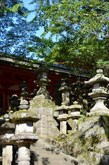 Enomoto Jinja Lanterns (pokoroto) Tags: autumn japan october lanterns  nara kansai jinja 2014 10    naraprefecture  enomoto kannazuki   themonthwhentherearenogods 26