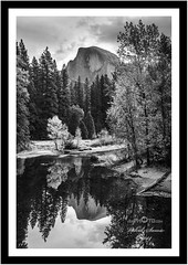 Half Dome (vahidss9) Tags: california trees blackandwhite bw reflection creek river nationalpark yosemite halfdome nikond810 vssphoto vahidss9 vahidsamie