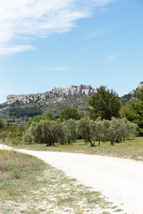 Off Road! (doublejeopardy) Tags: france tree olive fr lesbauxdeprovence provencealpesctedazur