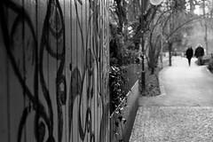 A couple on the way (Nikon FM3A) (stefankamert) Tags: street city blackandwhite bw woman plant man tree slr film analog way graffiti blackwhite nikon couple bokeh grain blurred xp2 epson sw nikkor ilford fm3a v550 schwarzweis stefankamert