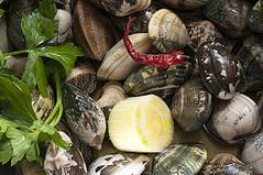Flavour of sea           #  Explore  # (pasquale.dimarzo) Tags: